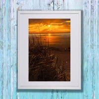Through the Reeds | Art Photography Print | Cliff Kinch